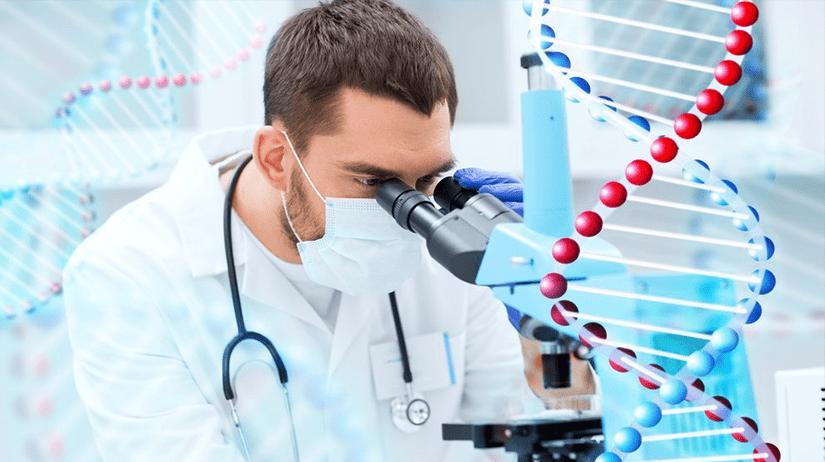 Молекулярно-генетическое сходство